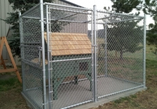 Chain link custom cages dog runs